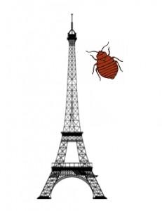 punaises de lit Paris