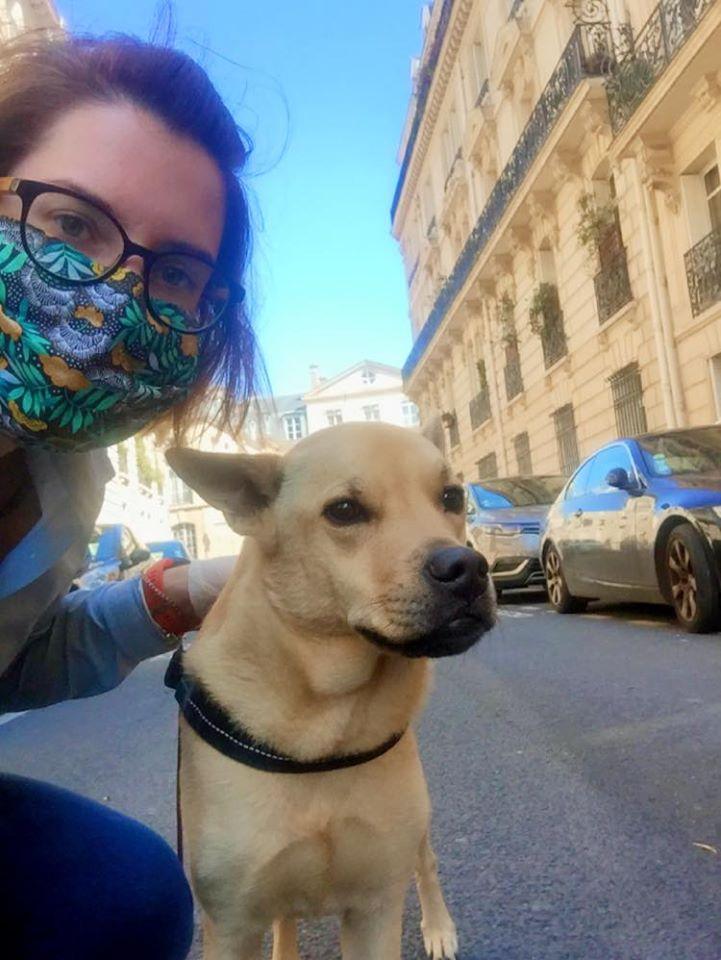 détection canine et masque covid 19