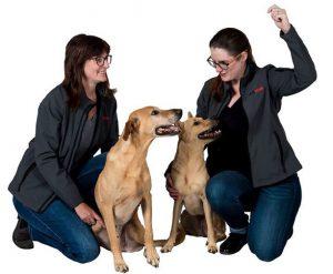 Emilie et Julie de Dogscan